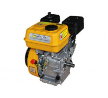 Двигатель бензиновый F210GT-25